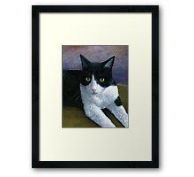 Cat 577 Tuxedo Framed Print