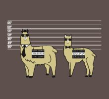 Difference Between Alpacas and Llamas Explained T-Shirt