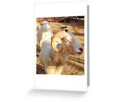 Smiley the Happy Ram Greeting Card