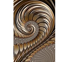 Bronze Scrolls Abstract Photographic Print