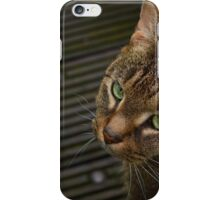Grey, Brown and Green iPhone Case/Skin