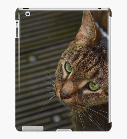 Grey, Brown and Green iPad Case/Skin