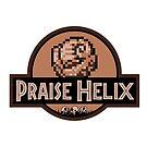 Praise Helix by StewNor