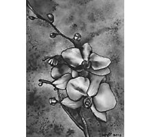 Orchid Watercolour Photographic Print