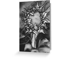 Grey scale Sunflower Greeting Card