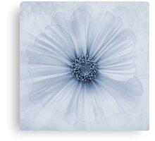 Evanescent Cyanotype Canvas Print