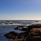 Glass Beach in panoramic view by vigor