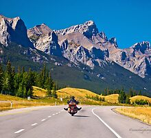 Easy Like Sunday Morning - Rocky Mountains - Alberta by Yannik Hay
