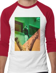 Order of Feath Men's Baseball ¾ T-Shirt