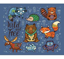 Woodland animals Photographic Print