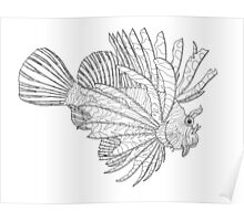 Lionfish Lines Poster