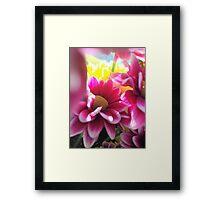 Summer in bloom 2 Framed Print