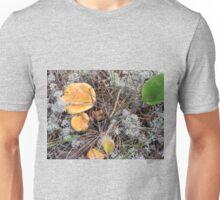 Chantrelle Mushrooms in Their Natural Habitat Unisex T-Shirt