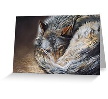 Watchful rest (Grey Wolf) Greeting Card