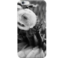 Black and White Bumble iPhone Case/Skin