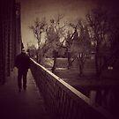 Crossing the bridge  by keri  youngblood