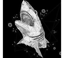 geo shark (FOR DARK BACKGROUNDS) Photographic Print