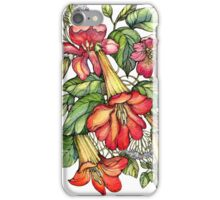 Red Trumpet Vine flowers. iPhone Case/Skin
