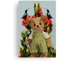 TEDDY AND THE BIRDS POINT OF VIEW Canvas Print