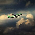 Aer Lingus  Airbus  by larry flewers