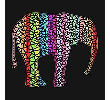 Coloured Elephant Photographic Print
