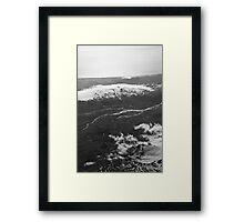 Glacier buddies Framed Print