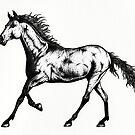Horse by James McKenzie