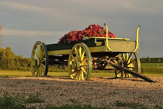 Wagon Full of Flowers by Dorothy  Pinder