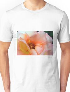 Macro on delicate pink rose. Unisex T-Shirt