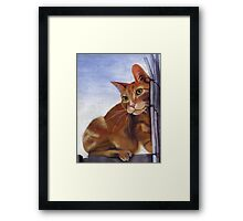 Mighty Quin Framed Print
