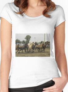 Horses in a trot Women's Fitted Scoop T-Shirt