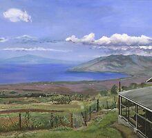 Haleakala by Brian DeYoung