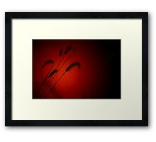 Grass Seed Sunset - Nature Background of Red Framed Print