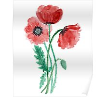 Red poppies painted with watercolor Poster