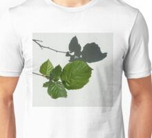 Sophisticated Shadows - Glossy Hazelnut Leaves on White Stucco - Horizontal View Left Down Unisex T-Shirt