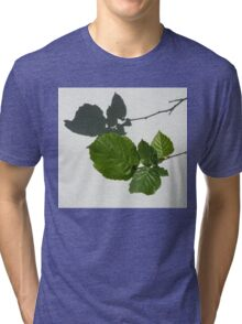 Sophisticated Shadows - Glossy Hazelnut Leaves on White Stucco - Horizontal View Right Down Tri-blend T-Shirt