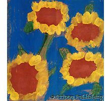Nadia's Sunny Summer Flowers Photographic Print