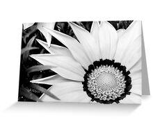 white treasure flower Greeting Card