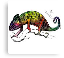 lizard chameleon animal wild Canvas Print