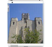 University of Toledo- Campus Mall Side IV iPad Case/Skin