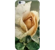 Rosebud After The Rain iPhone Case/Skin