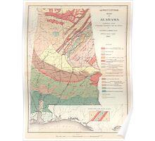 Vintage Agricultural Map of Alabama (1882) Poster