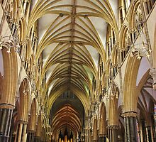 Lincoln Cathedral  by jaoxley