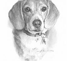 old beagle drawing by Mike Theuer