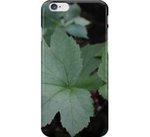 Goldenseal with Red Berry iPhone Case/Skin