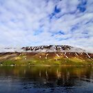 Islandic Cliffs and Sky by Steve