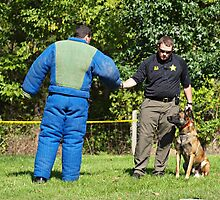 Police K-9 Training by Bine