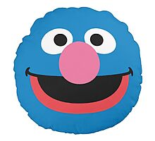 grover face Photographic Print
