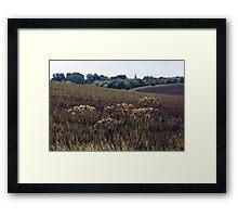Peasemore Landscape Framed Print