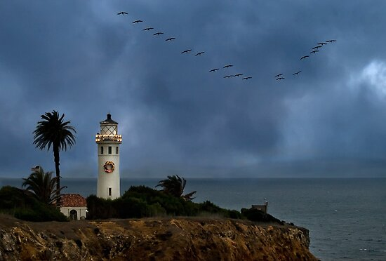 Storm brewing off Point Vicente by Celeste Mookherjee